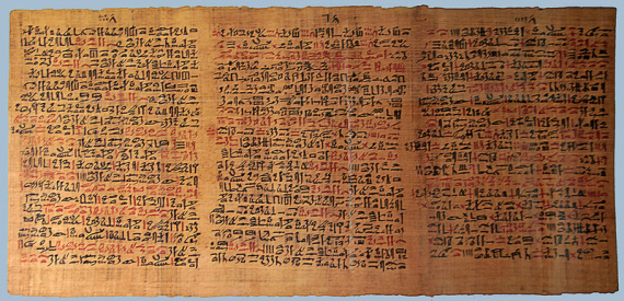 Sunaris Moringa Ägypten Behenöl